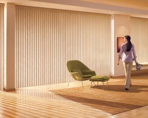 blinds (4)